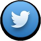52defb8dd9a57bd16f00005c_twitter-icon%402x.png