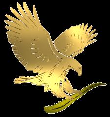 5271f15c73a66ecc2500013c_eagle%20logo.png