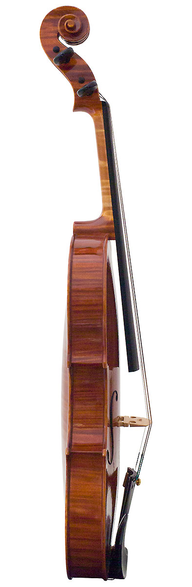 Side of David Burgess's 2008 violin