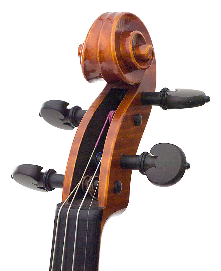 Scroll, David Burgess's 2008 violin