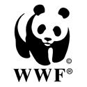5307ce713e274f132a0000a6_WWF125.png