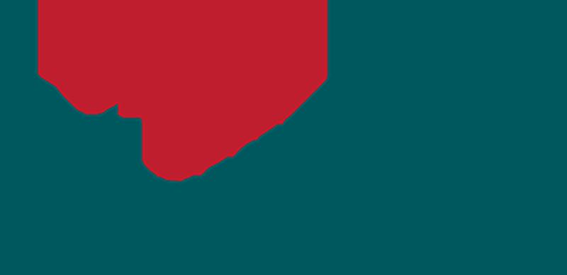 53dfafd66d330938792d63e1_tc-services-logo_pick.png