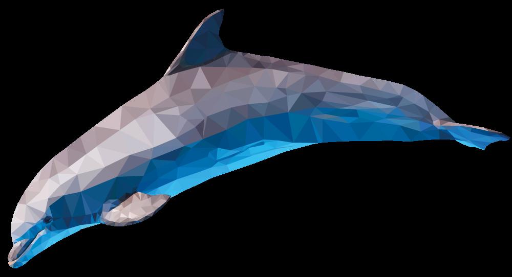 54075f5e9b2ba878330f6f36_dolphin.png