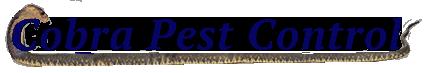 551a7ba9d4570a897be69a84_cobra-logo.png