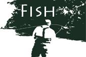 5509723dab514c696b51e844_fishingThumb.jpg