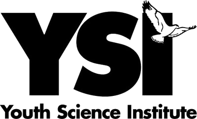 Youth Science Institute