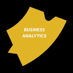 Intelivert Business Analytics