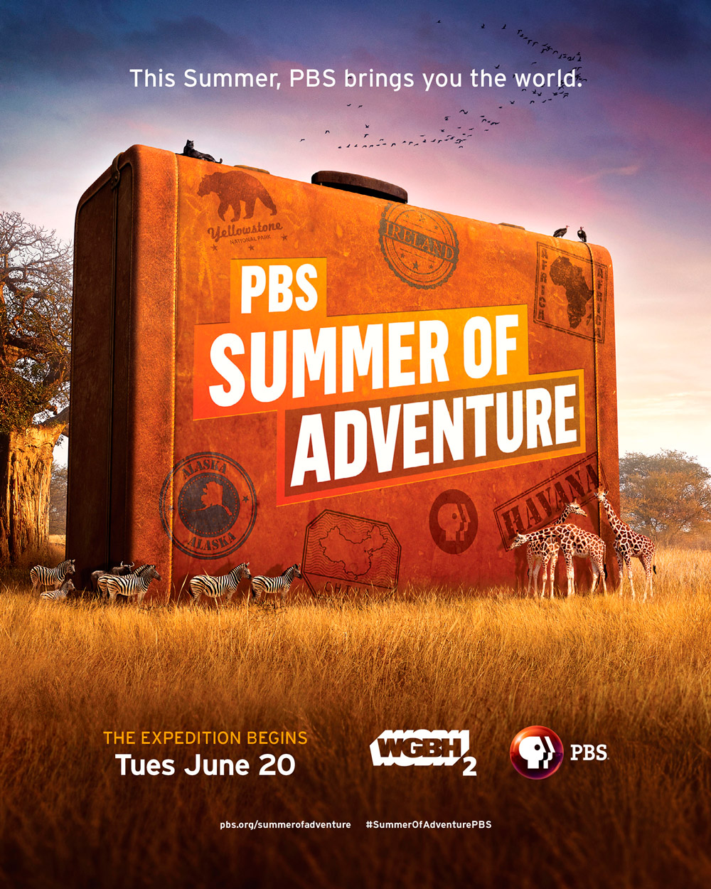 Summer of Adventure