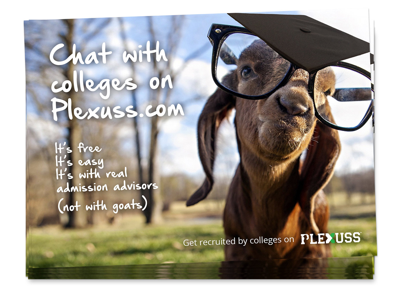 chat with colleges postcard