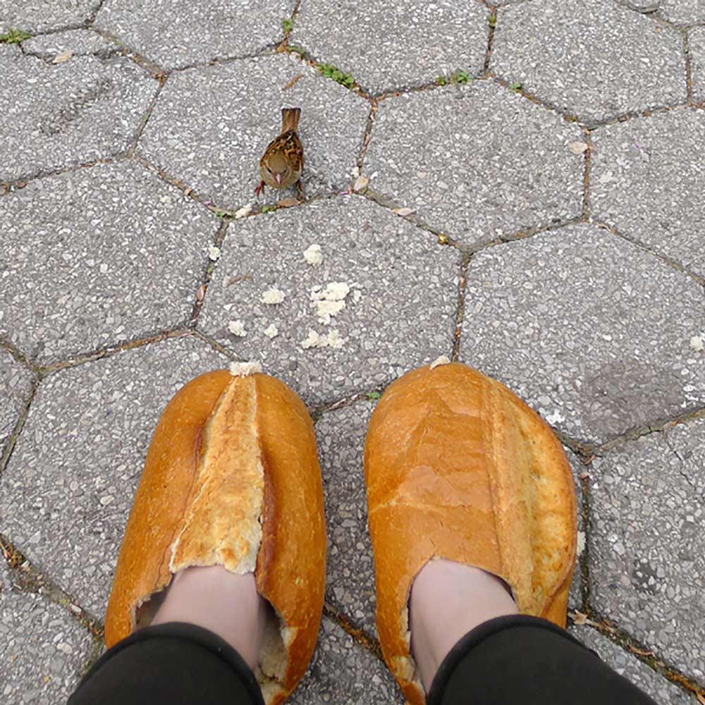Photo: breadfeet and bird