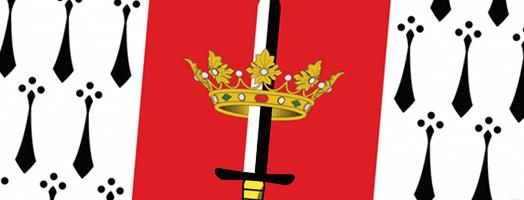 Ilustración de la Bandera de Carolina.