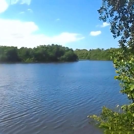 Canal Blasina, Carolina.
