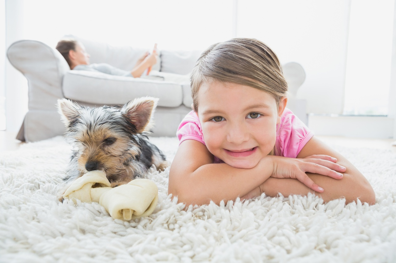 Photo of young girl and dog on carpet