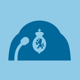Second Chamber icon by #dutchicon for the Dutch Government (Rijksoverheid).