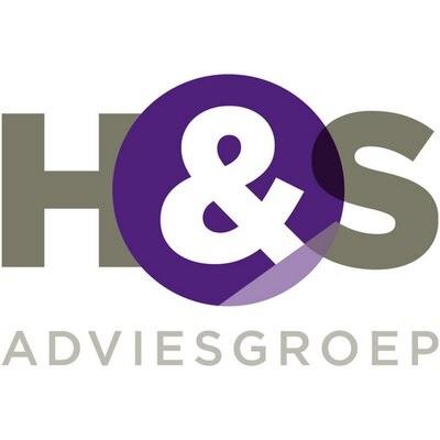 H&S Adviesgroep