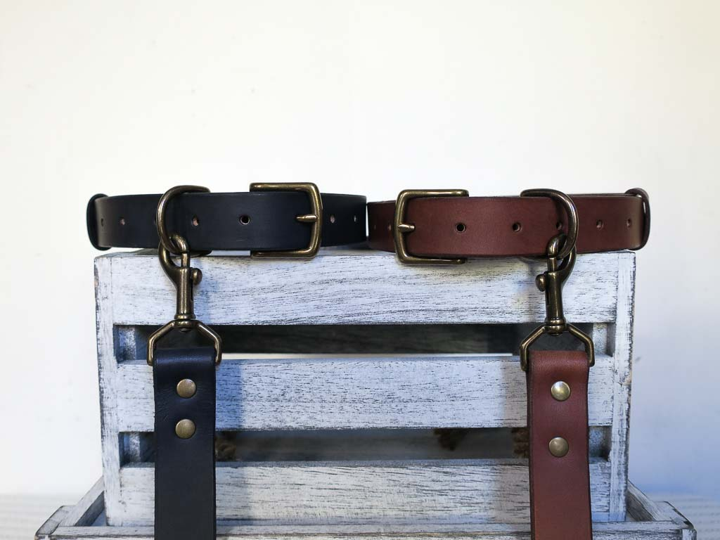 Uphill Designs - Bajada pet leash - both colors attached to collars