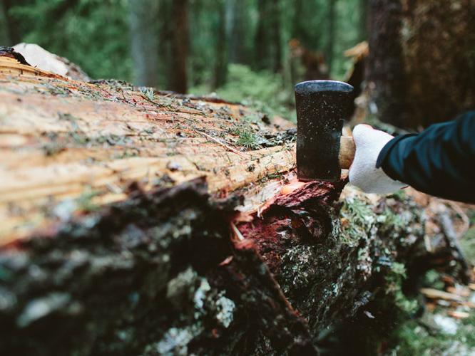 Photo Essay: Uphill Designs + PCTA trail crew