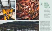 Langoustine fisherman Hughie features in Ernest Journal