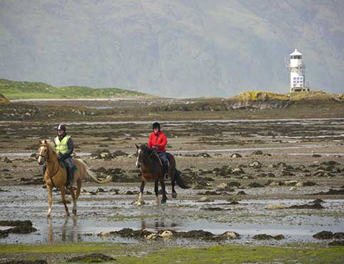 Horse riding and pony trekking opportunites at The Pierhouse