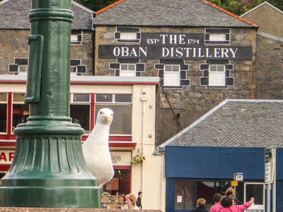 The Oban Distillery - the nearest whisky distillery to The Pierhouse Hotel