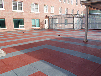 Hotel Dieu Canada Roof terrace 2 Project Photo