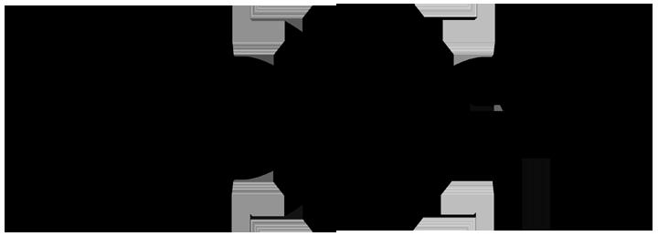 Echo Geo logo