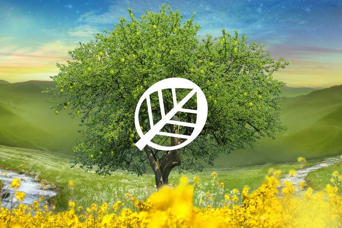 Biotique eCommerce Website