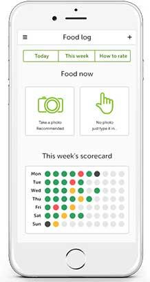 Screenshot of the app's food log screen