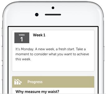 Screenshot of the app's feed screen