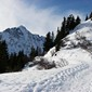 Guided Alpine snowshoeing tours with Mountain Balance
