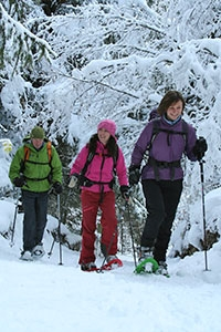 Guided Snowshoeing, Chamonix, French Alps