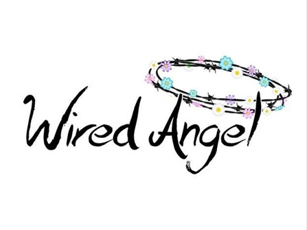 Wired Angel