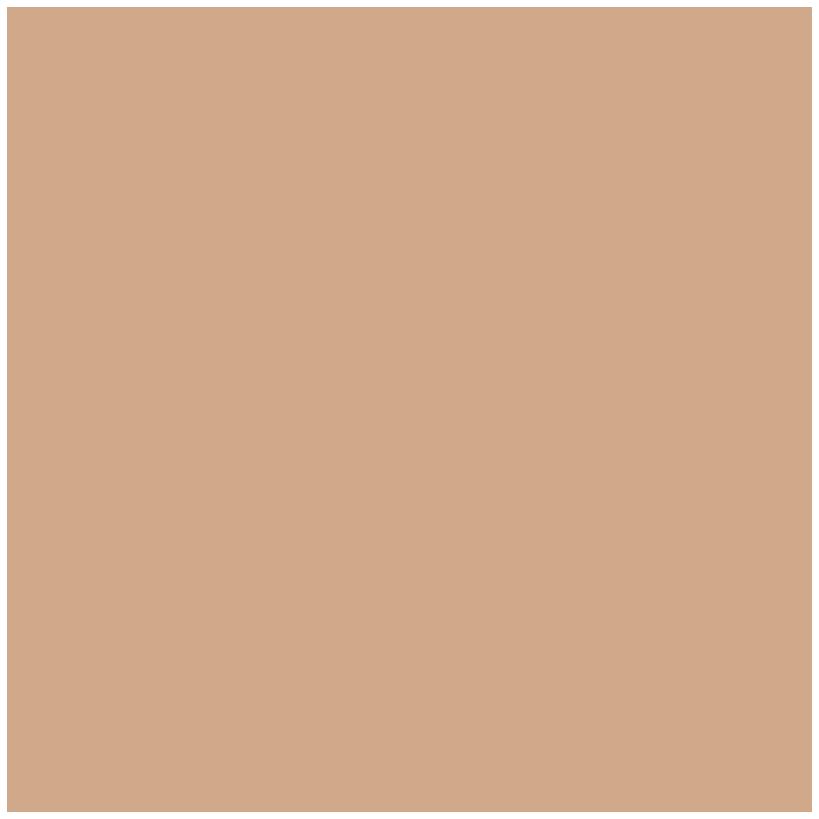 opus neoi logo