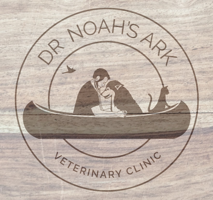 dr noahs ark veterinary clinic logo round