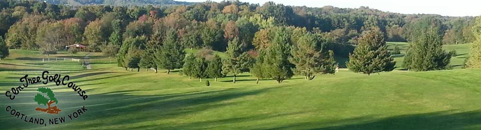 Elm Tree Golf Course