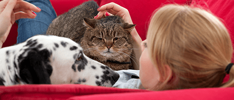 Woman enjoying pets thanks to allergy relief