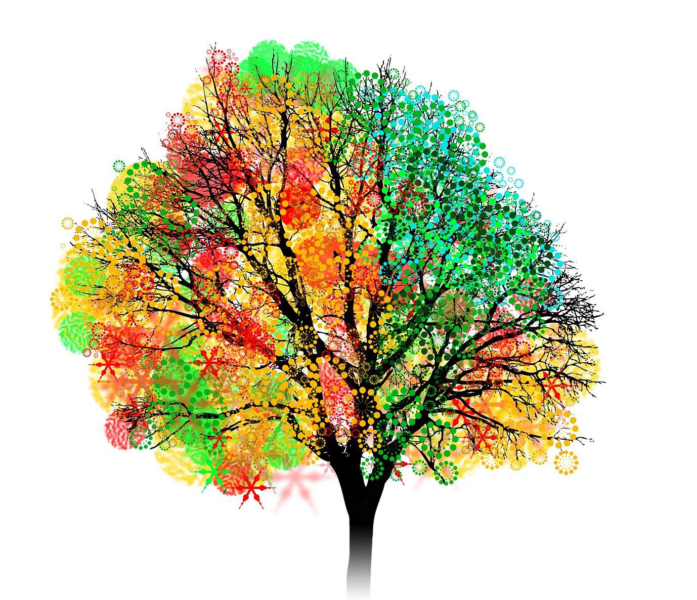 tree of 40fruit image